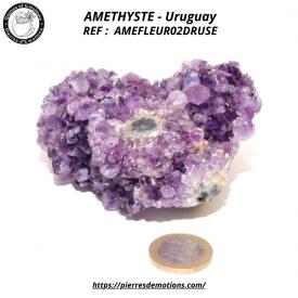 AMETHYSTE Uruguay - Fleur...