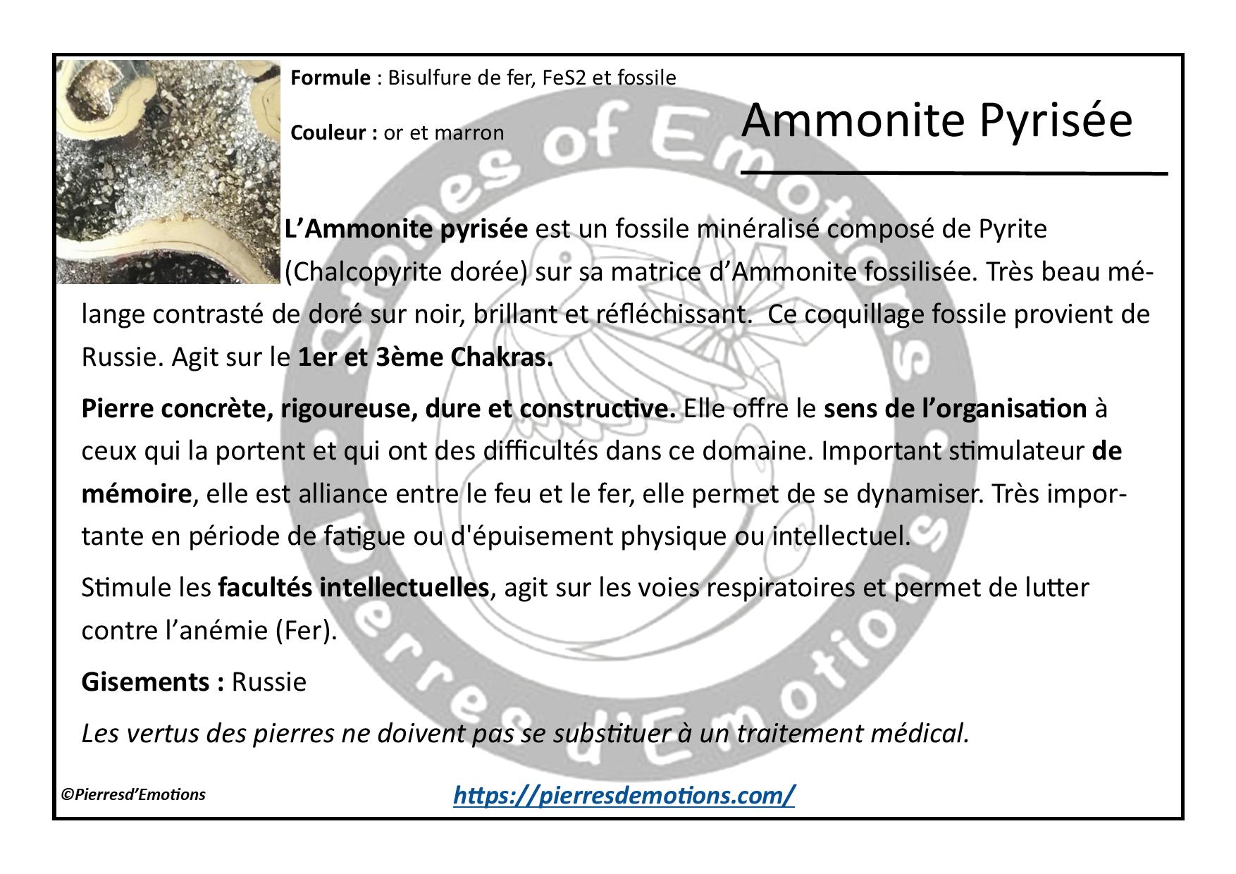 AmmonitePyrisee