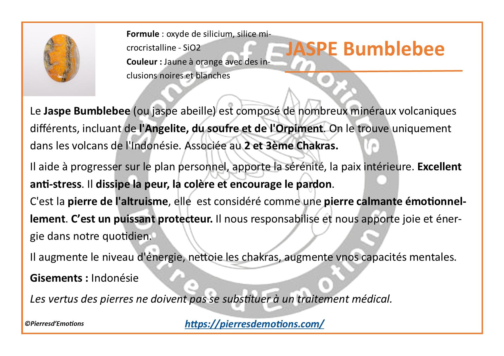 JaspeBumblebee